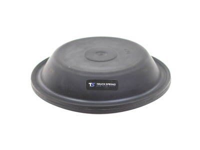 Type 20 Diaphragm D20